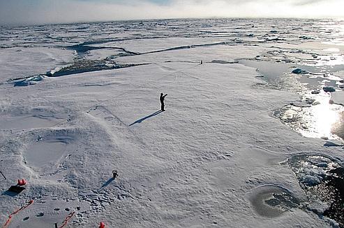 Arctique : la fonte des glaces bat un nouveau record