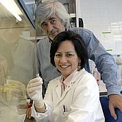 Paludisme: un vaccin français prometteur