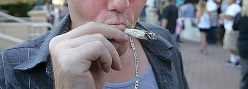 Le cannabis, une ligne de fracture entre les candidats socialistes