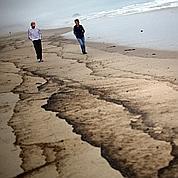 Grave marée noire en Nouvelle-Zélande