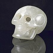 Les crânes mayas seraient... allemands