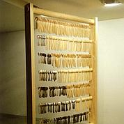 Mircea Cantor, Prix Marcel Duchamp 2011