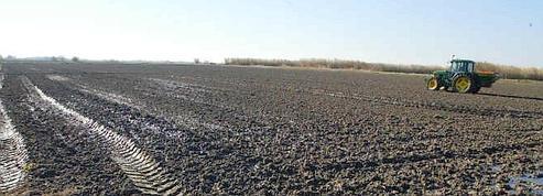 Le coût des principales pollutions agricoles de l'eau
