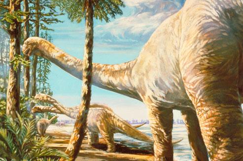 Les dinosaures parcouraient des distances d'au moins 300 kilomètres pour rejoindre le massif volcanique qui bordait la frange ouest de ces grandes plaines. (Crédits photo: AP)