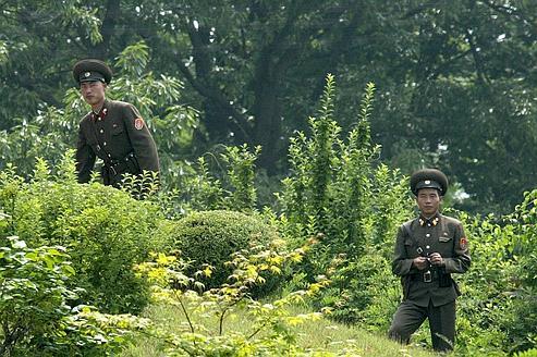 Entre les Corées, le paradis sauvage de la guerre froide