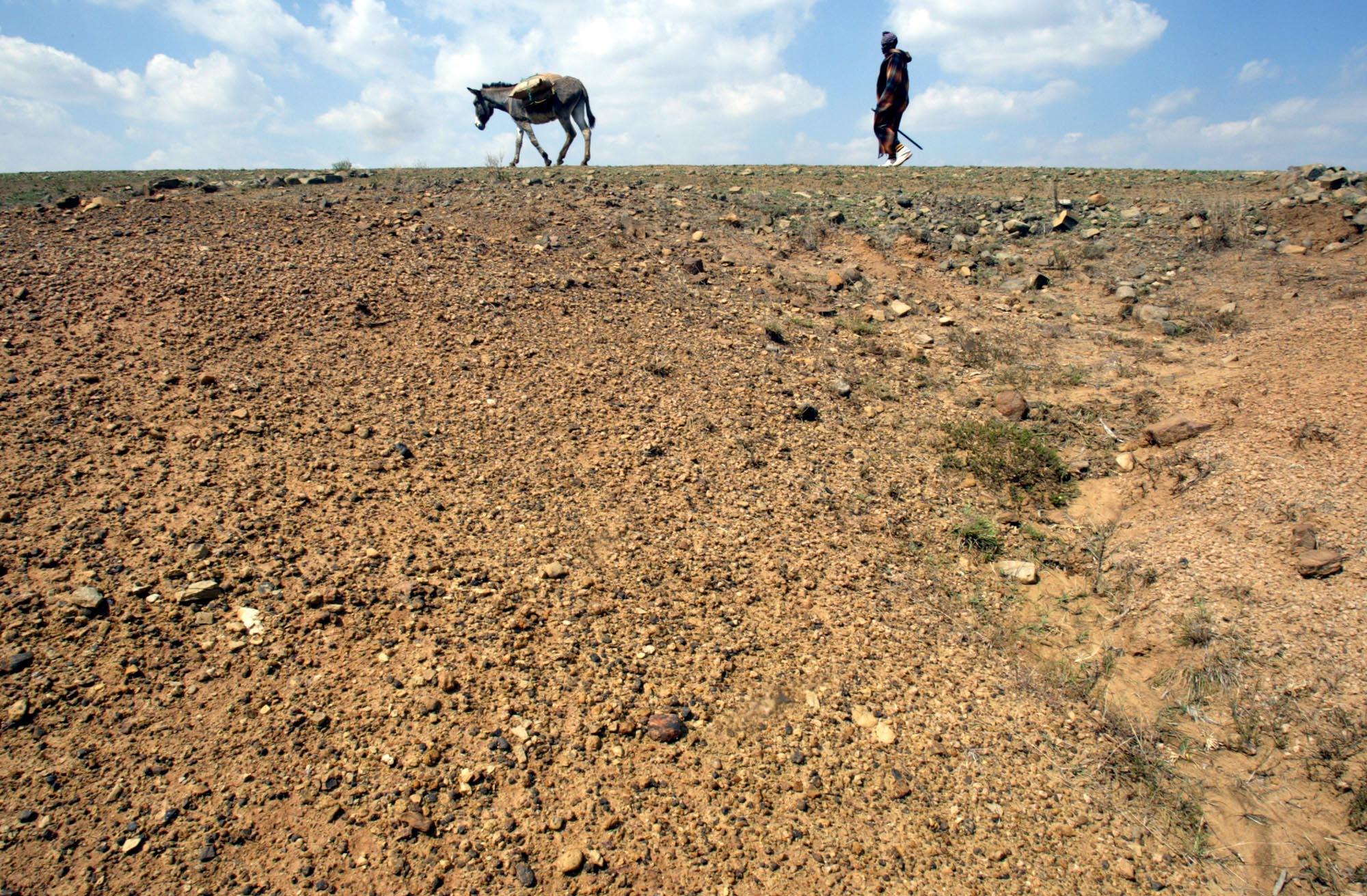 1983, la sécheresse sévit en Afrique