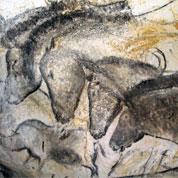 Mobilisation pour la grotte Chauvet