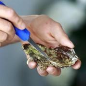 Chine: même les huîtres risquent la contrefaçon