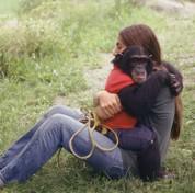Un singe en misère