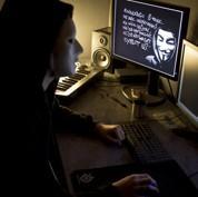 Dans l'univers des pirates du Net français