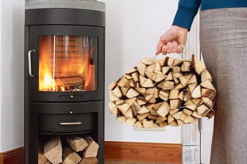 Le bois de chauffage flambeen Ile-de-France