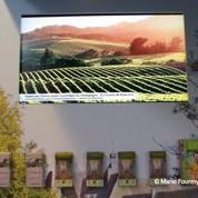 Photo de Californie sur une pub pour la Picardie