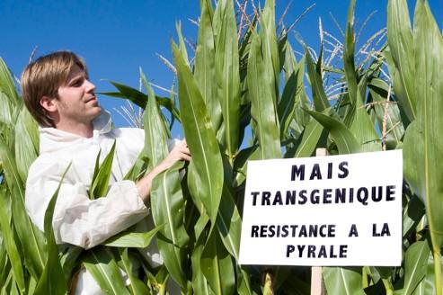 Démissions en cascade au Haut Conseil des biotechnologies