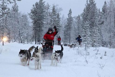 Laponie finlandaise, voyage en hiver arctique
