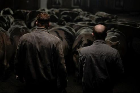 Bullhead ,des bestiaux et des hommes