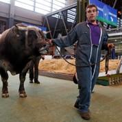 Les agriculteurs votent Sarkozy