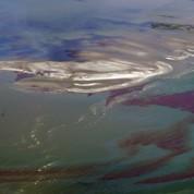 BP toujours sous le choc de la marée noire