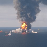 Procès marée noire : BP espère négocier