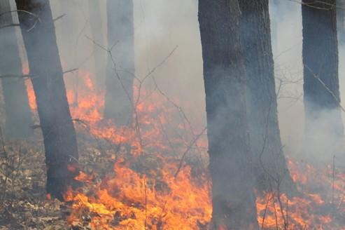 Les poussières d'incendie tuent aussi