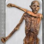 La momie d'Ötzi est conservée à Bolzano (Italie). Crédits photo: Samadelli Marco/EURAC