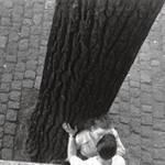 «Amoureux sur les bords de Seine », 1949, Izis Bidermanas.