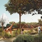 Livraison prévue au printemps 2014 pour le nouveau zoo de Vincennes