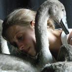 «Swan», un ballet de Luc Petton. @Luc Petton