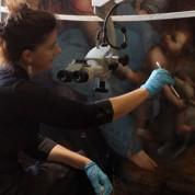 La restauration agitée de Sainte Anne de Vinci