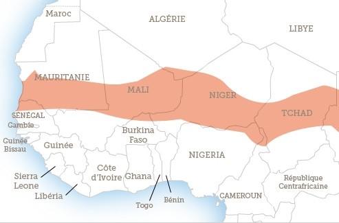 Huit pays de la zone sahélienne sont touchés par la sécheresse et ses conséquences.