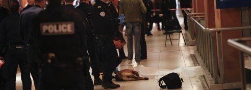Un chien abattu en pleine foule gare du Nord