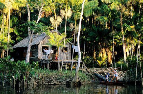 L'Amazonie: un lieu où l'homme et la nature cohabitent depuis la nuit des temps.