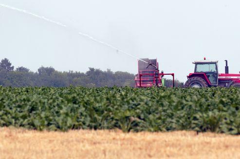 Les terres agricoles prennent de plus en plus de valeur