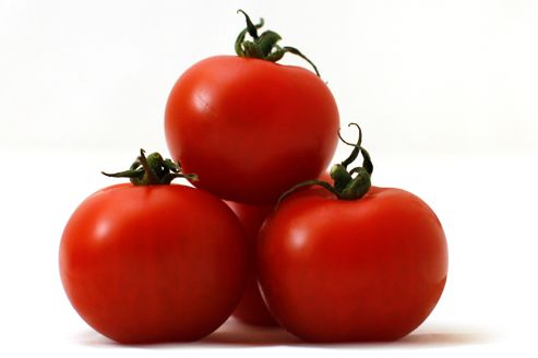 Le g nome de la tomate est int gralement s quenc for Noctuelle de la tomate