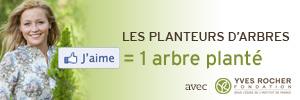 Les planteurs d'arbres