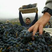 Vins californiens: un élu du Gers veut le boycott