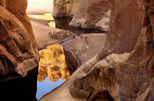 La source de la Guelta d'Archeï, logée au creux des falaises, accueille chaque matin dès l'aube, dans un paysage inchangé depuis des millénaires, les dromadaires des caravanes acheminant les dattes et le sel vers les grandes villes et leurs marchés.