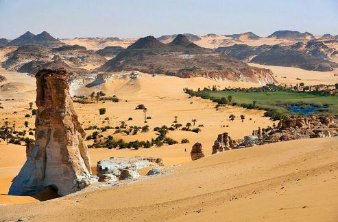 Au terme d'un voyage de plusieurs jours, une oasis apparaît, jaillissement de vie dans le désert.