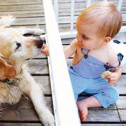 Les bébés au contact de chiens moins infectés