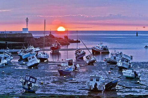 La pêche reste une ressource majeure. Homards, crustacés, bars et surtout la blonde de Barfleur (moule).