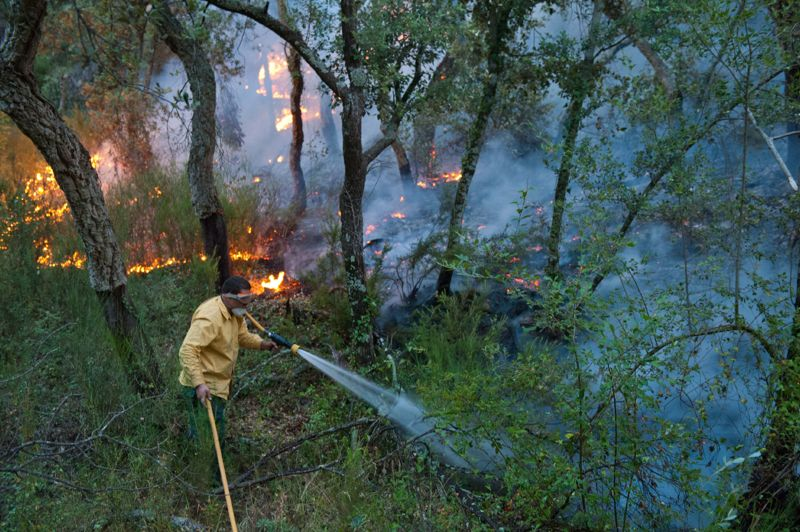 <strong>Brasier. </strong>Environ 450 pompiers français soutenus par 150 véhicules et sept avions bombardiers d'eau étaient mobilisés ce mardi en territoire espagnol, pour maîtriser l'incendie qui embrase la Catalogne depuis dimanche. Plus exactement, les pompiers français interviennent à l'arrière de l'incendie, véritable brasier, sur un périmètre de 3700 hectares, le long de la frontière avec la France. L'incendie a jusqu'ici ravagé 14.000 hectares en Espagne et fait quatre morts.