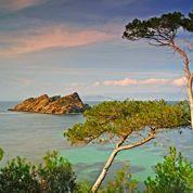 Port-Cros : l'île aux trésors