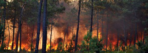 L'incendie de Lacanau est contenu