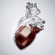 Christiaan Barnard et la greffe du cœur