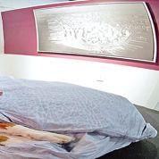 New York va se doter d'un palace pour chiens