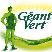Le Géant vert, dans la vallée depuis 1928