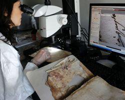 Une restauratrice observe un document du XVIIIe siècle à l'aide d'un microscope équipé de filtres polarisant la lumière.