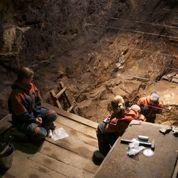 Le génome d'un cousin de Neandertal décrypté