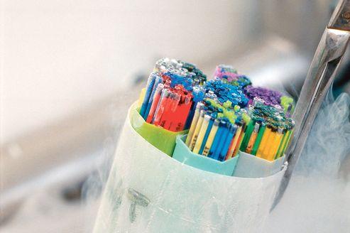 Conservation des paillettes de spermatozoïdes dans l'azote liquide.