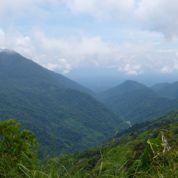Biodiversité : cap sur la Papouasie