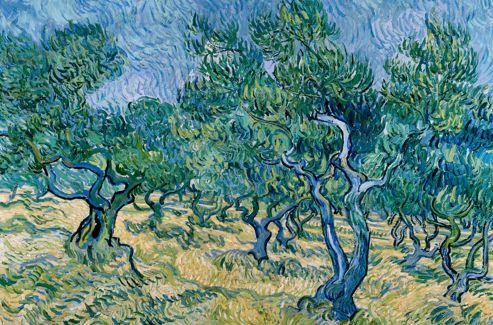 Van Gogh dit lui-même que ce  Champs d'oliviers  est «une furie d'empâtements, de brutalités et de reprises». C'est aussi un chef-d'œuvre d'harmonie bleu-vert.